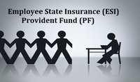 Provident Fund Services