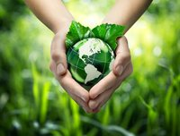 Environment Testing Services