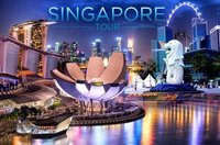Singapore Tour Service