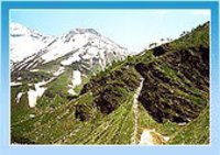 Himachal Hill Tour Packages