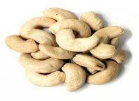 Fresh Cashew Kernels