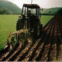 Agricultural Surveys