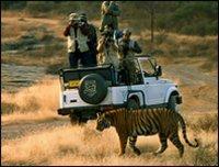Rajasthan Wildlife Safari Tour