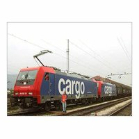 Domestic Railway Cargo