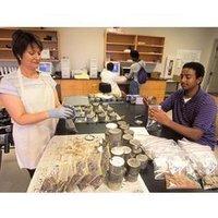 Lab Testing Services