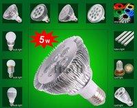 PAR30 LED Par Light 5Watts