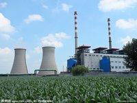 Biomass Fuel Power Plant
