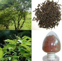 10% Cinnamon Bark Plant Extract