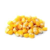 Non Frozen Sweet Corn