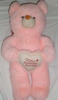 Special Teddy Bear