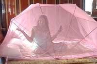 Bed Mosquito Folding Net