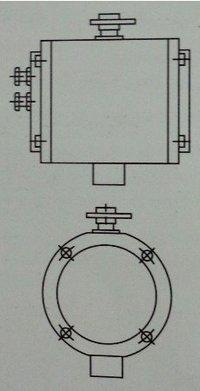 Pneumatic Actuator