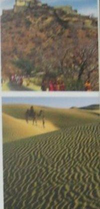 Royal Rajasthan Tour Services