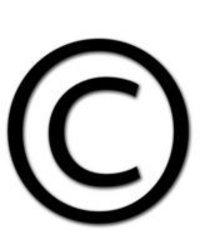 Label Copyright Services
