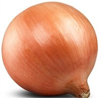 Hybrid Onion Seeds