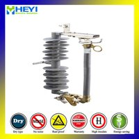33kv Fuse Cut-Out With Fiberglass Arcing Tube Polymer