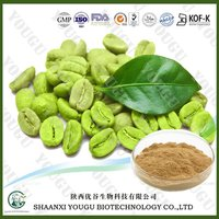 Green Coffee Bean Extract 50% Chlorogenic Acid