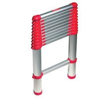 Automatic Telescopic Ladder