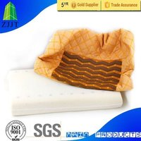 Tourmaline Particle Memory Foam Pillows