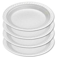 Disposable Foam Plate