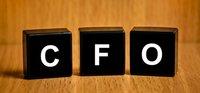 Cfo Financial Health Checkup Services