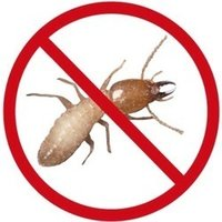 Termite Control Services