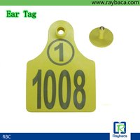 Cattle Ear Tags