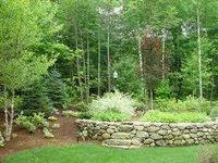 Commercial Landscape Contractor Services