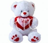 Soft Toys-Ktc-St11 Teddy Bear