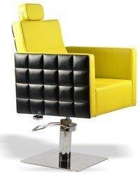 Concept Salon Chair