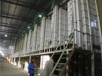 Jasee 12t And Batch Paddy Dryer