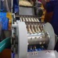Cashew Nut Color Machine