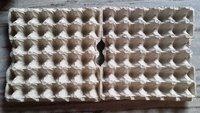 Egg Packaging Trays