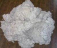 Cotton Linters