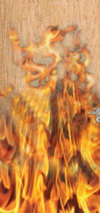 Fire Retartant Doors