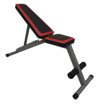 Sit Up Ab Bench Home Gym Exercise Equipment