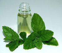 Fresh Menthol Oil