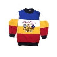 Boys Elegant Look Sweater