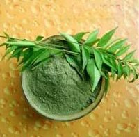 Curry Leaf And Curry Leaf Powder