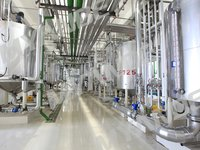 Edible And Vegetable Oil Refining Plant