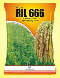 Ril 666 Hybrid Paddy Seed