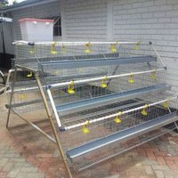 Type A Chicken Layer Cages