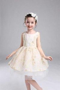 Baby Girl Partywear Dress