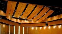 Auditorium Wooden Acoustics Service