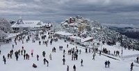 Shimla Tour Package Service