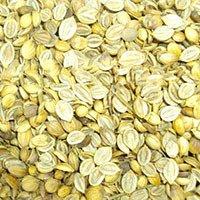 Coriander Seeds Splited