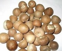 Dried Areca Nuts