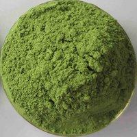 Barley Grass Extract Powder