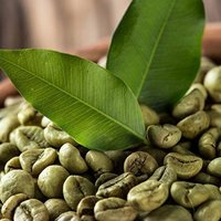Fresh Arabica Coffee Bean
