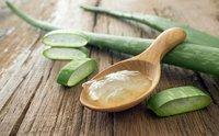 Premium Aloe Vera